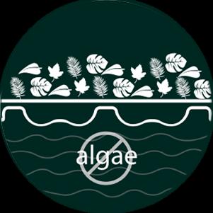 Algae & contamination control